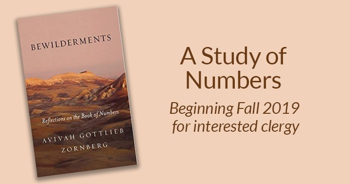 A study of Numbers based on Bewilderments