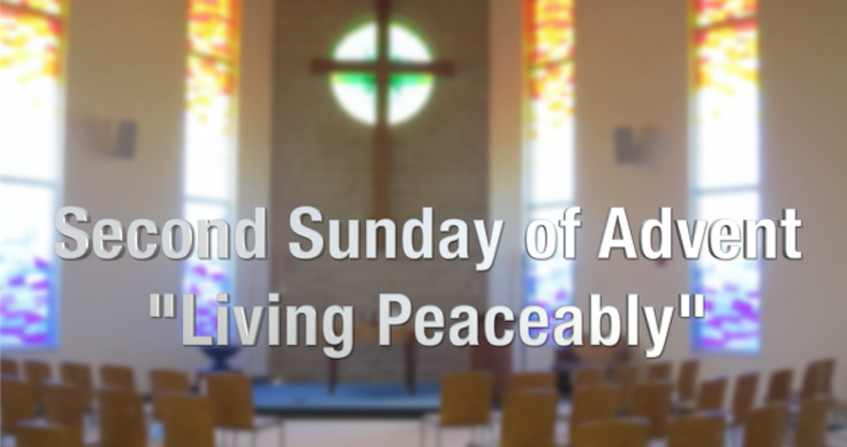 Living Peaceably: An Advent message from Terra Amundson