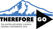 2016 General and Jurisdictional Conference elections and petitions